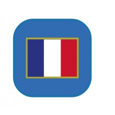 WWII - French Tricolour Card Wallet